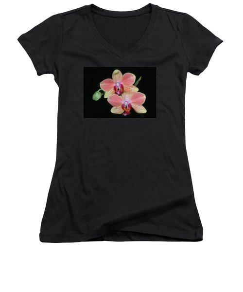 Orchid 4 Women's V-Neck T-Shirt (Junior Cut)