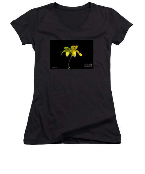 Women's V-Neck T-Shirt (Junior Cut) featuring the photograph Orchid Paphiopedilum Druid Spring by Susan Wiedmann