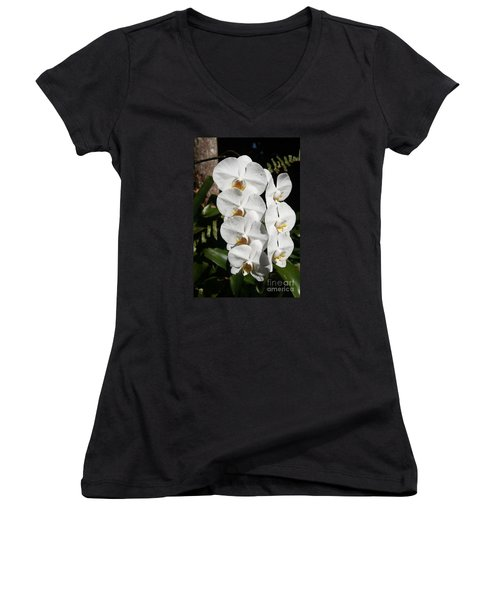 Orchids Anna Women's V-Neck T-Shirt (Junior Cut) by The Art of Alice Terrill