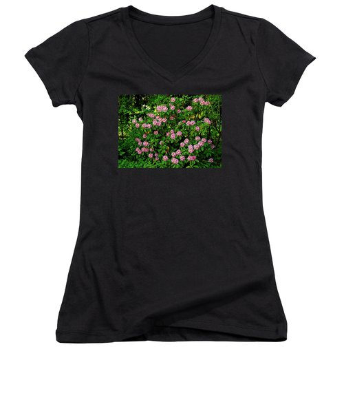 Oregon Azaleas Women's V-Neck T-Shirt (Junior Cut) by Ed  Riche
