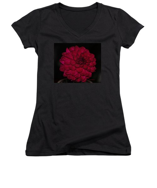 Ornate Red Dahlia Women's V-Neck T-Shirt