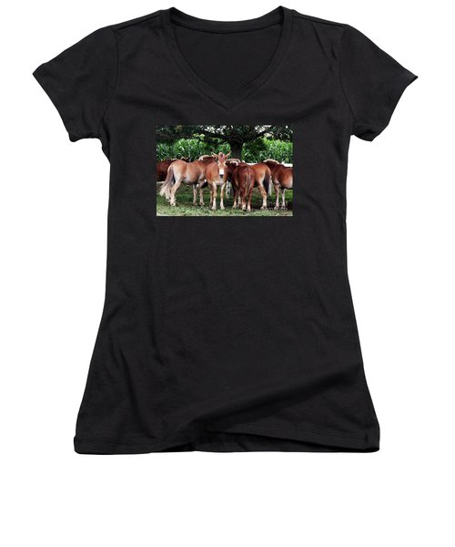 Outstanding In Your Field Women's V-Neck T-Shirt