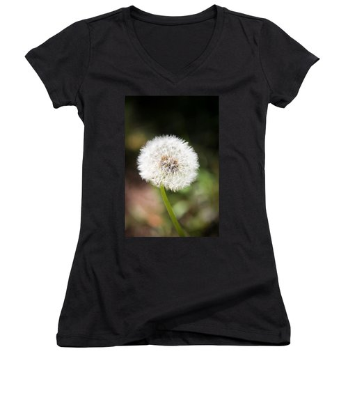 Aaron Berg Women's V-Neck T-Shirt (Junior Cut) featuring the photograph Overlooked  by Aaron Berg