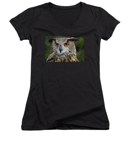 Owl Bubo Bubo Portrait Women's V-Neck (Athletic Fit)