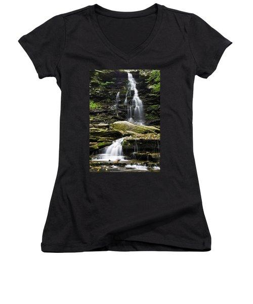 Ozone Falls Women's V-Neck T-Shirt (Junior Cut)