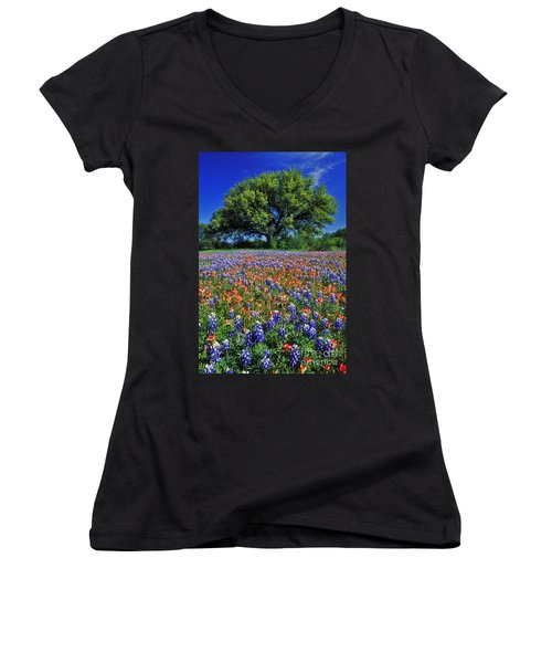 Paintbrush And Bluebonnets - Fs000057 Women's V-Neck T-Shirt (Junior Cut) by Daniel Dempster