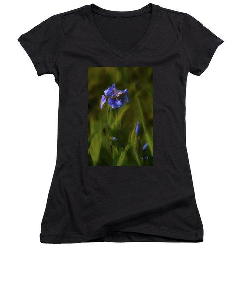 Painted Alaskan Wild Irises Women's V-Neck
