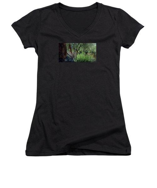 Palm Desert Museum Of Art Women's V-Neck T-Shirt
