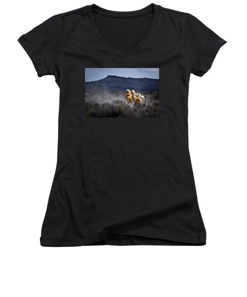 Palomino Buttes Band Women's V-Neck