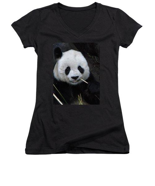 Panda Women's V-Neck T-Shirt