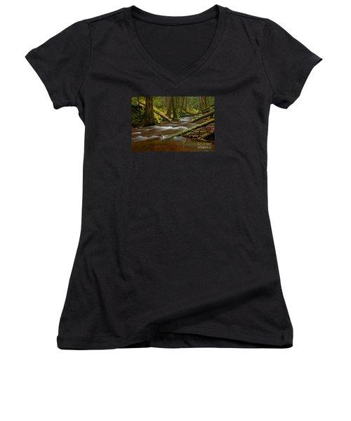 Women's V-Neck T-Shirt (Junior Cut) featuring the photograph Panther Creek Landscape by Nick  Boren