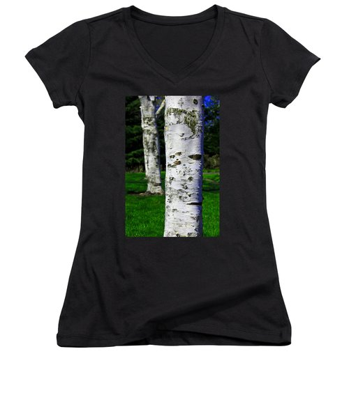 Aaron Berg Women's V-Neck T-Shirt (Junior Cut) featuring the photograph Paper Birch Trees by Aaron Berg