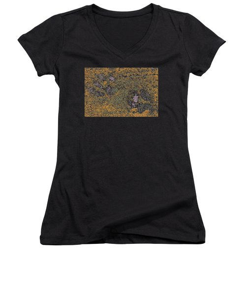 Paw Prints With A Tinge Of Lilac Women's V-Neck T-Shirt