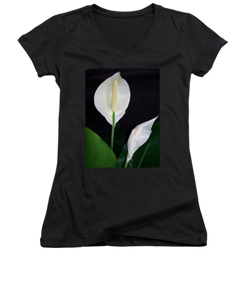 Peace Lilies Women's V-Neck T-Shirt (Junior Cut) by Sharon Duguay