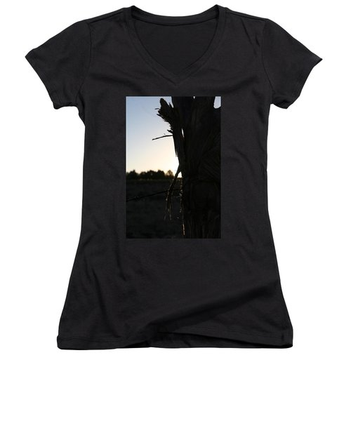 Women's V-Neck T-Shirt (Junior Cut) featuring the photograph Pealing by David S Reynolds