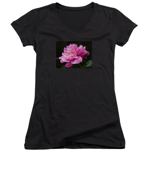 Peony Blossoms Women's V-Neck (Athletic Fit)