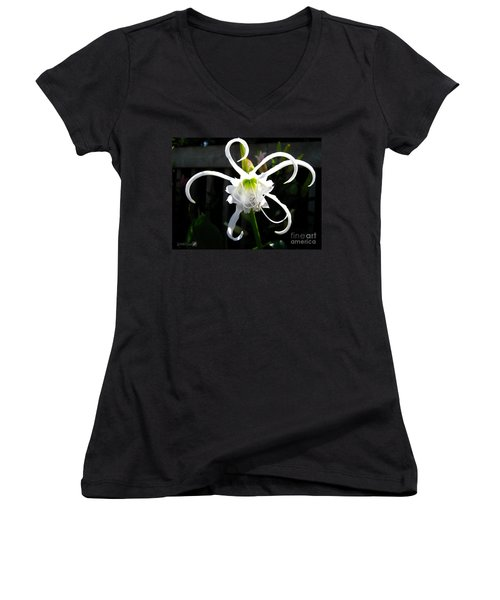 Peruvian Daffodil Named Advance Women's V-Neck T-Shirt (Junior Cut) by J McCombie