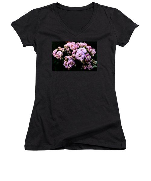 Petite And Pink Women's V-Neck T-Shirt (Junior Cut) by Steve Taylor