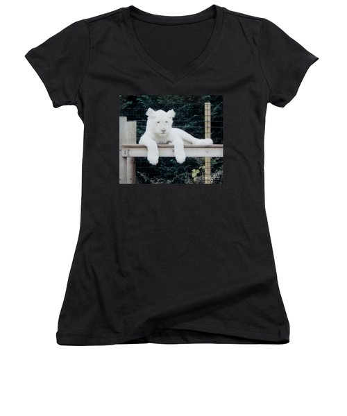 Women's V-Neck T-Shirt (Junior Cut) featuring the photograph Philadelphia Zoo White Lion by Donna Brown