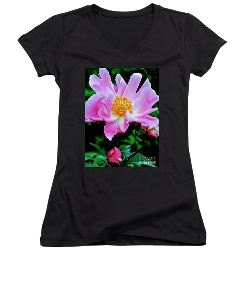 Pink Peony Garden  Women's V-Neck T-Shirt (Junior Cut) by Carol F Austin
