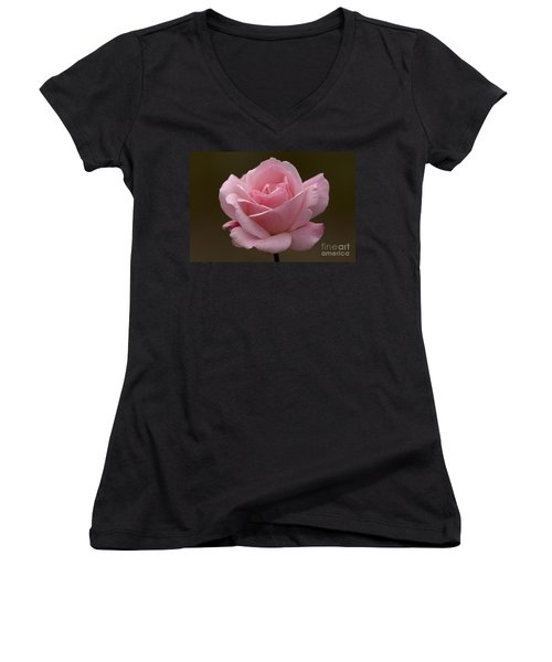 Women's V-Neck T-Shirt (Junior Cut) featuring the photograph Pink Rose by Meg Rousher