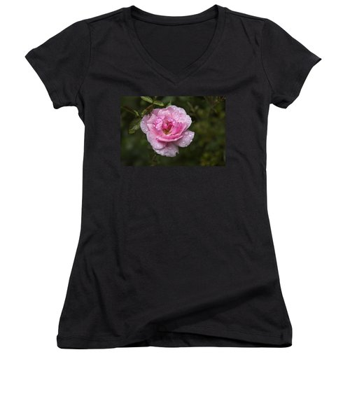 Pink Rose With Raindrops Women's V-Neck (Athletic Fit)