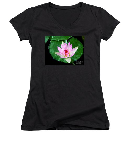 Women's V-Neck T-Shirt (Junior Cut) featuring the photograph Pink Waterlily Flower by David Lawson