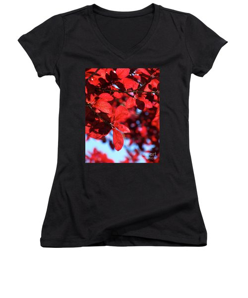 Women's V-Neck T-Shirt (Junior Cut) featuring the photograph Plum Tree Cloudy Blue Sky 2 by CML Brown