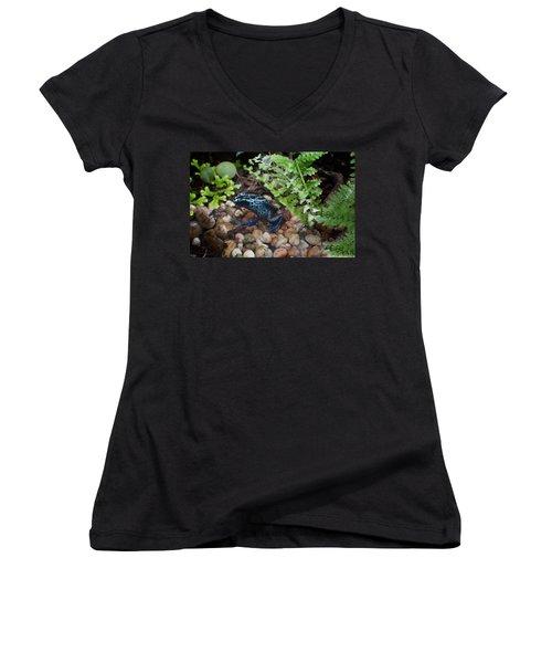 Poison Dart Frog Women's V-Neck T-Shirt (Junior Cut) by Carol Ailles