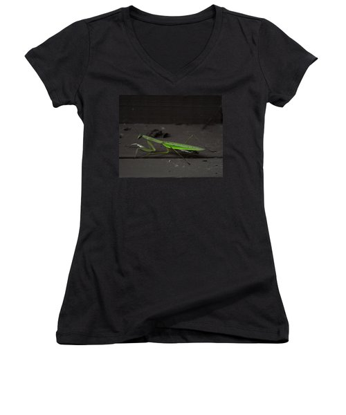 Praying Mantis 2 Women's V-Neck