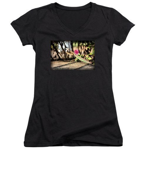 Praying Mantis Women's V-Neck T-Shirt (Junior Cut) by Kristin Elmquist