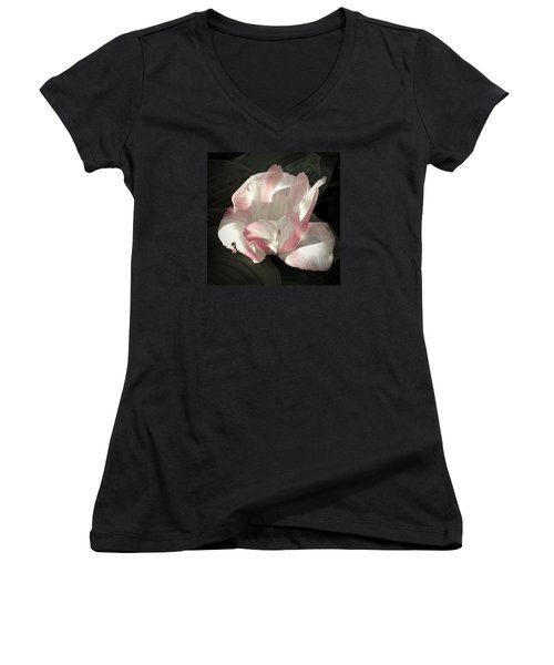 Women's V-Neck T-Shirt (Junior Cut) featuring the photograph Pretty In Pink by Photographic Arts And Design Studio