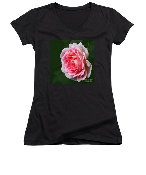 Pretty Pink Rose Women's V-Neck (Athletic Fit)