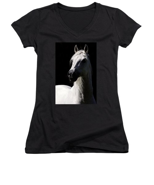 Proud Stallion Women's V-Neck T-Shirt (Junior Cut) by Wes and Dotty Weber