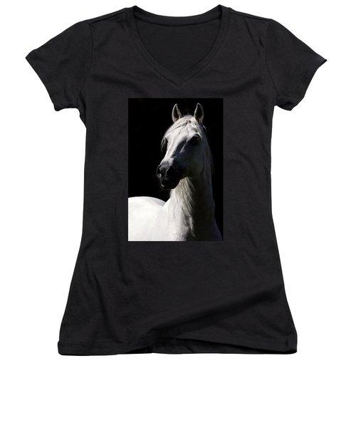 Proud Stallion Women's V-Neck T-Shirt
