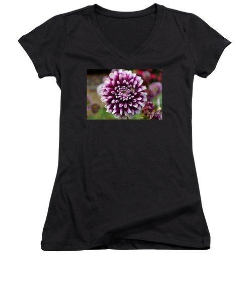 Purple Dahlia White Tips Women's V-Neck