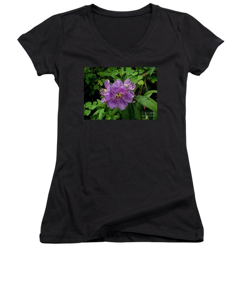 Women's V-Neck T-Shirt (Junior Cut) featuring the photograph Purple Flower by Sergey Lukashin