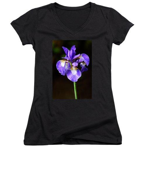 Purple Iris Women's V-Neck T-Shirt (Junior Cut) by Adam Romanowicz