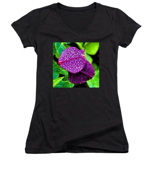 Purple Shimmer Women's V-Neck