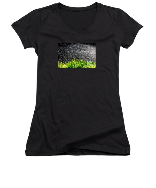 Rain In The Garden Women's V-Neck T-Shirt (Junior Cut) by Edgar Laureano