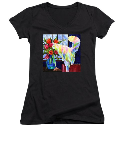 Rainbow Connection Women's V-Neck T-Shirt (Junior Cut) by Sherry Shipley