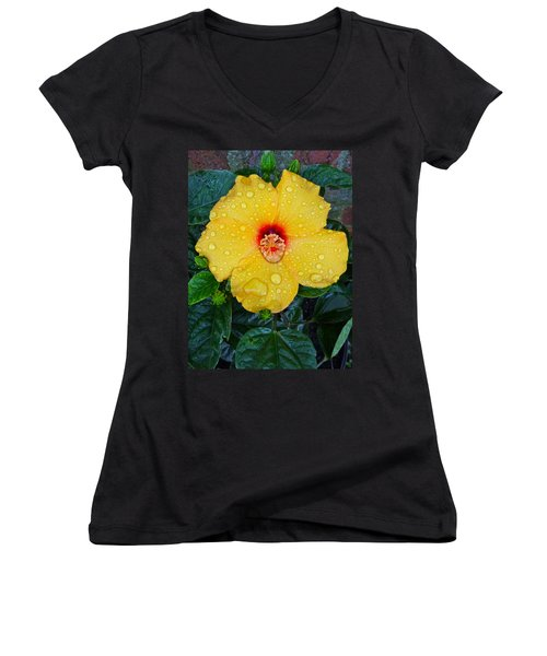 Raindrops Women's V-Neck T-Shirt (Junior Cut)