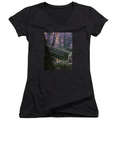 Rainforest Mysteries Women's V-Neck T-Shirt (Junior Cut) by Jack Malloch