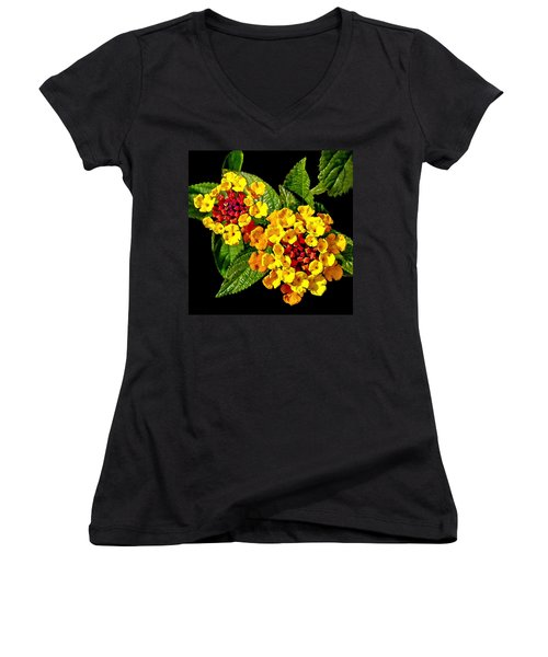 Red And Yellow Lantana Flowers With Green Leaves Women's V-Neck