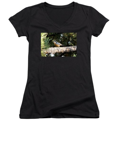 Red-breasted Nuthatch In Pine Tree Women's V-Neck (Athletic Fit)
