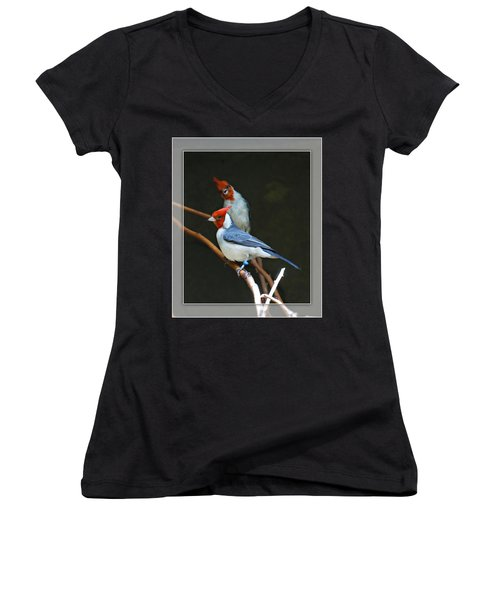 Red-crested Cardinal Women's V-Neck T-Shirt (Junior Cut)