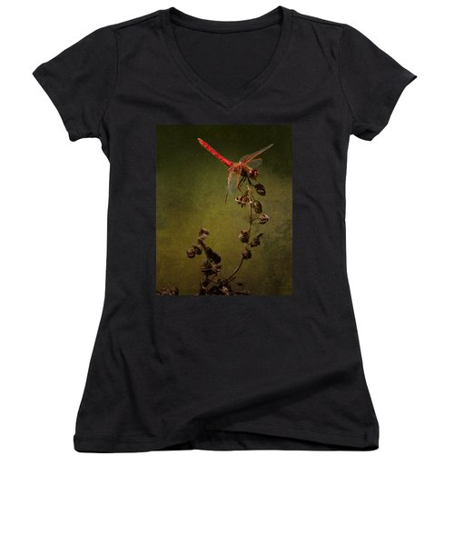 Red Dragonfly On A Dead Plant Women's V-Neck (Athletic Fit)