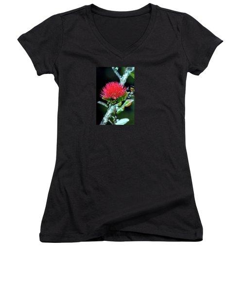 Red Lehua  Kawaiko'olihilihiokalikolehua Women's V-Neck T-Shirt