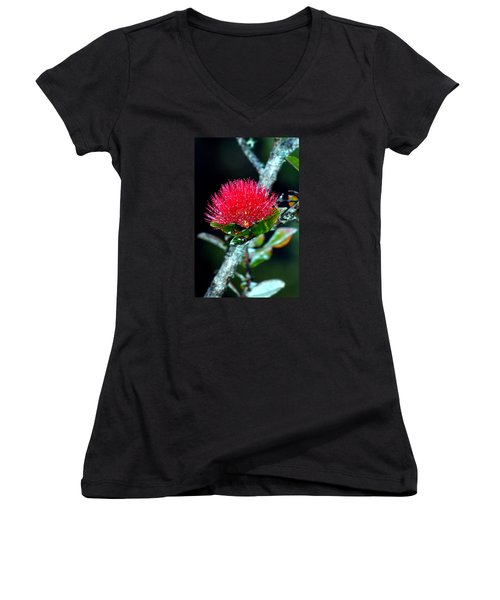 Women's V-Neck T-Shirt (Junior Cut) featuring the photograph Red Ohia Lehua In Hawaii Volcano Mist by Lehua Pekelo-Stearns