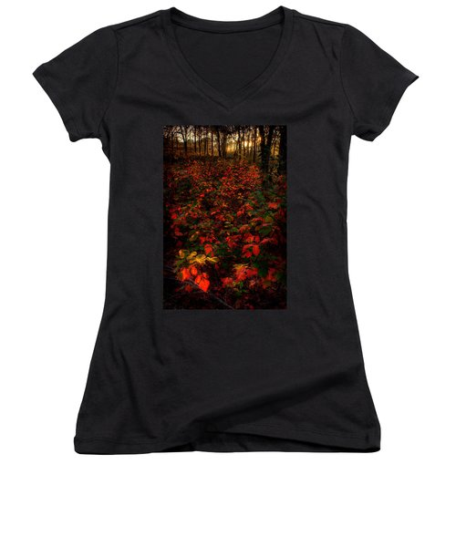 Red Sumac Women's V-Neck (Athletic Fit)